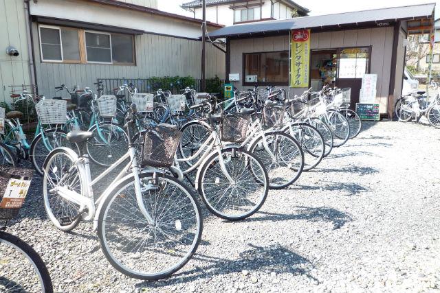 【岩手・平泉・レンタサイクル】サイクリングで軽快に観光!普通自転車1日プラン