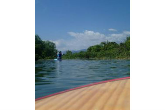 【徳島・SUP】初心者が思いっきり楽しめるSUP体験!海or川でのクルージングツアー