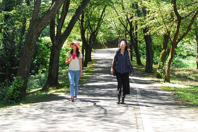 【石川・津幡町・森林セラピー】健康チェック付きセラピーウォーク!2時間プラン