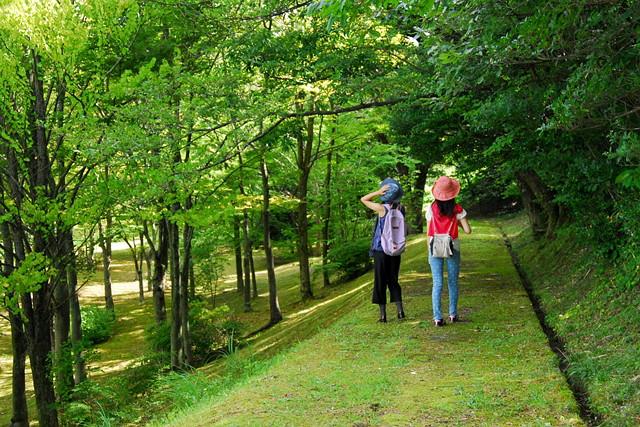 【石川・津幡町・森林セラピー】ヨガまたはストレッチで体をほぐそう!3時間プラン