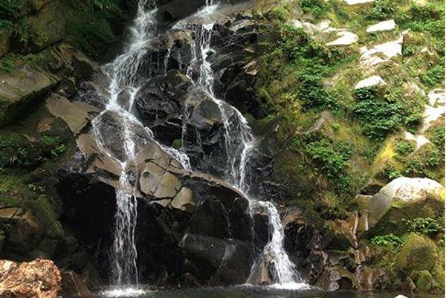 【鳥取・エコツアー】水の一生をたどる旅!名水湧く関金町でのウォータージャーニー