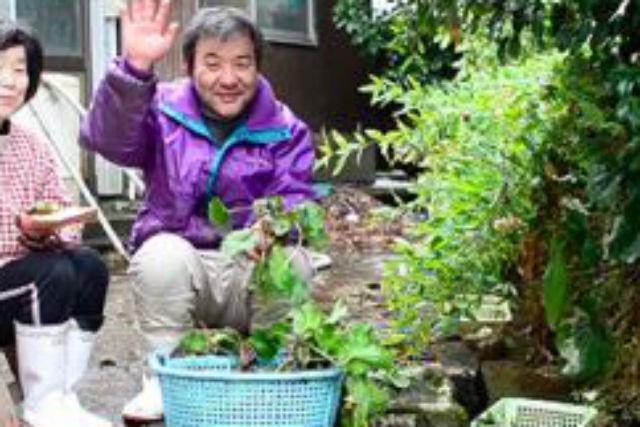 【鳥取・農業体験】わさび農家の仕事をお手伝い!清流の里だけの、貴重な農業体験