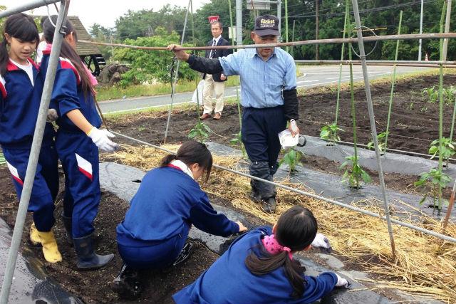 【鳥取・農業体験】プチ自給自足体験!里山の農家夫婦に習うスローライフ