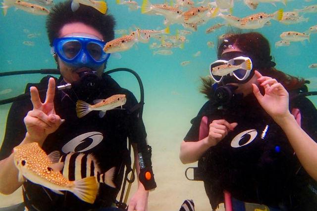 【長崎・壱岐・ダイビング】初心者でも安全に楽しめる!体験ダイビングにチャレンジ