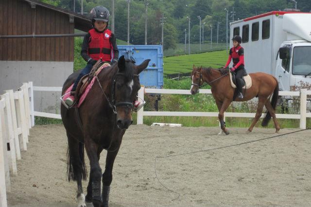 【奈良・月ヶ瀬・乗馬体験】馬との触れあいに癒される!初めてでも安心の体験乗馬