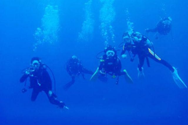 【沖縄・恩納村・ファンダイビング】残波岬・真栄田岬・万座などのエリアで、1ボートダイビング!