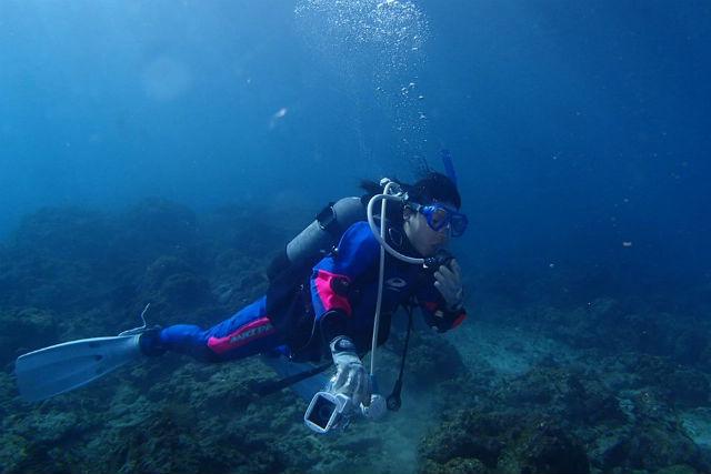 【屋久島・体験ダイビング】世界遺産の海に2回潜れる!初心者向けの体験ダイビング