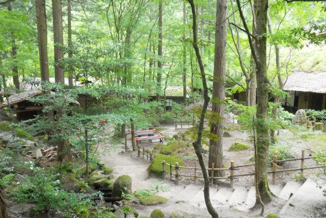 【鳥取・ガイドツアー・Gバス】因幡の人気観光スポットへ!緑あふれる宿場町・グリーンコース