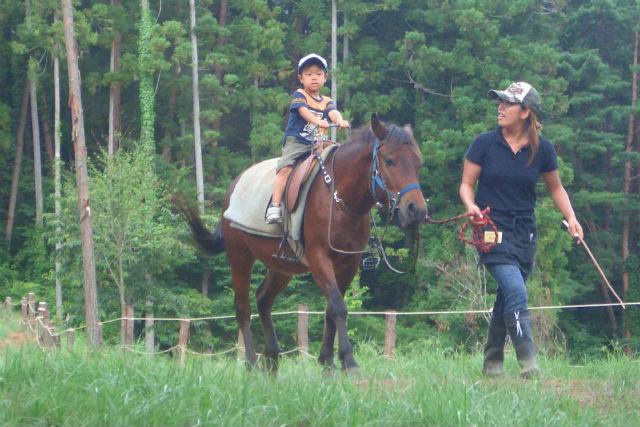 【山梨・河口湖・乗馬体験】引き馬で安心乗馬体験!自然豊かな牧場をのんびり歩こう
