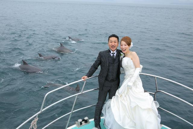【熊本・天草市・イルカウォッチング】遭遇率ほぼ100%!イルカウォッチングに出かけよう
