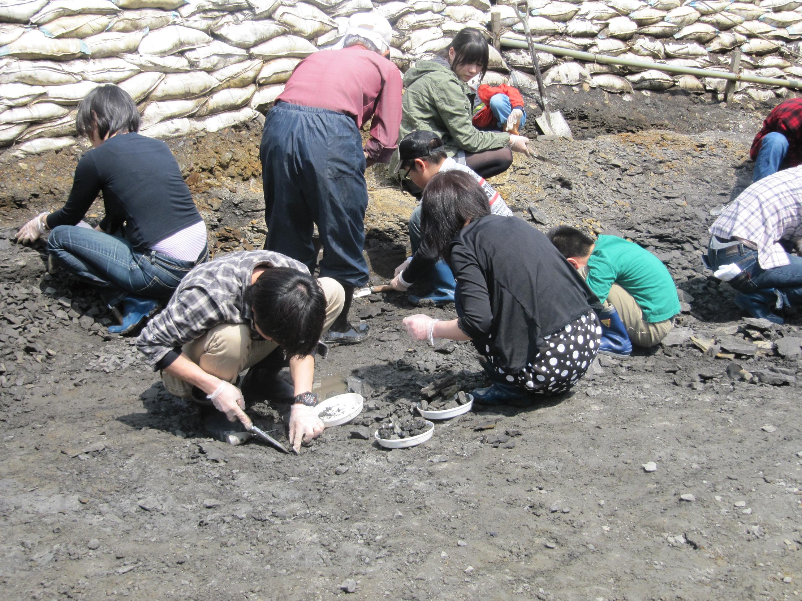 【岩手・久慈・自然体験】8000万年前の地層を掘ろう!白亜紀にロマンを感じる琥珀採掘体験
