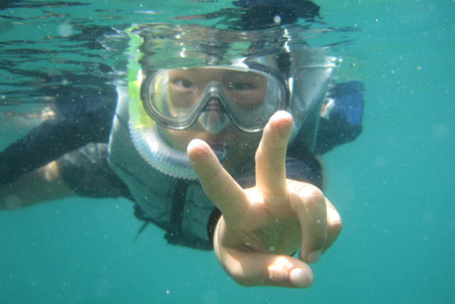 【宮崎・シュノーケル・SUP】1日で海の世界を堪能できる!レンタル・送迎無料のお得ツアー