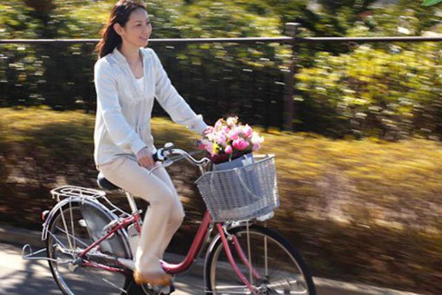【京都市・レンタサイクル】電動アシスト自転車で、京都の町をスイスイ走れます!3時間プラン