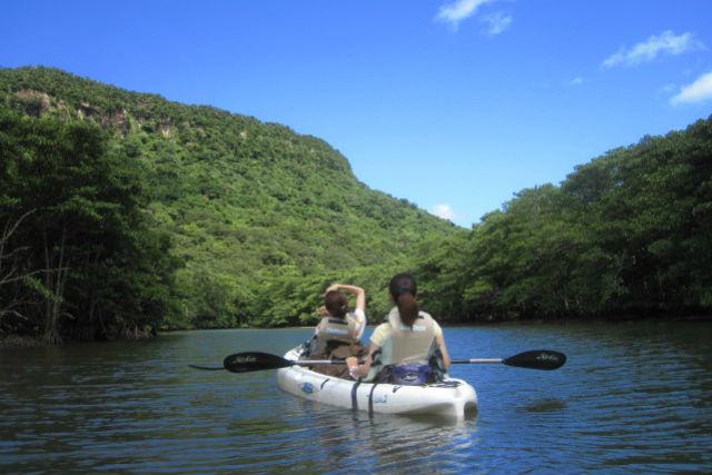 【西表島・シュノーケリング】ジャングルでも、海でも楽しい西表島!サンガラの滝&バラス島ツアー