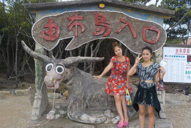 【沖縄・西表島・ガイドツアー】探検と観光がダブルで楽しめる!サンガラの滝&由布島観光ツアー