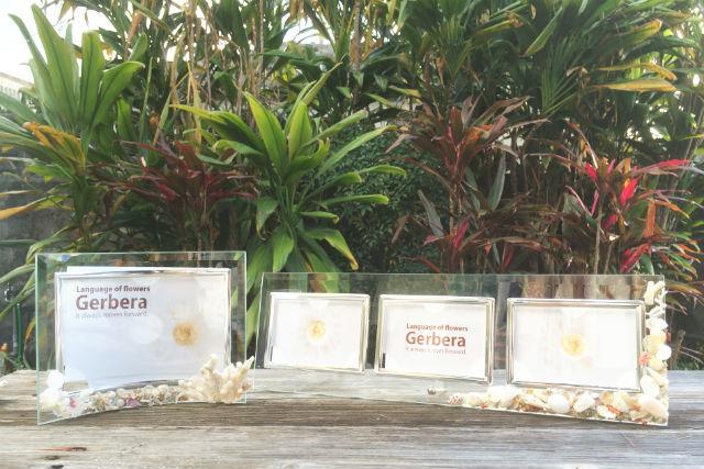 【沖縄・マリンクラフト】貝殻・サンゴ・ガラス片「海の宝物」で作るフォトフレーム!