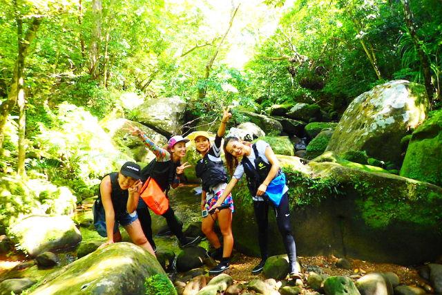 【西表島・SUP・1日】亜熱帯の森でSUP体験!マングローブSUPと滝トレッキング