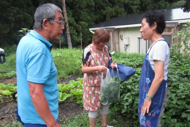 【岩手・大槌町・藍染体験】被災地で藍を育てる1年プロジェクト!小物類を藍染めしよう!