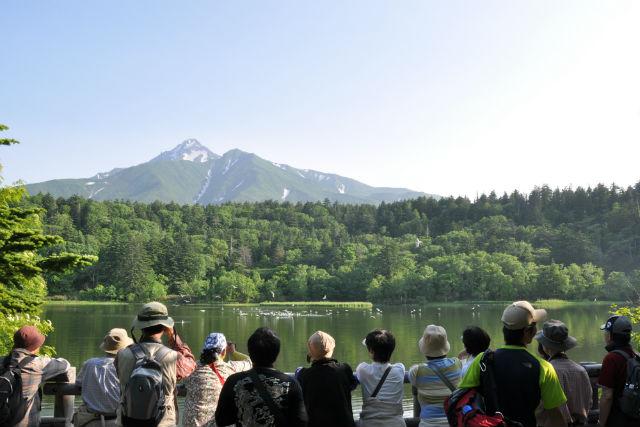 【北海道・利尻島・ハイキング】自然豊かな癒しの島を歩こう!利尻島ハイキングプラン