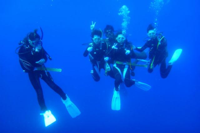【高知・体験ダイビング】「日本の快水浴場百選」認定!興津の海で初めてのダイビング