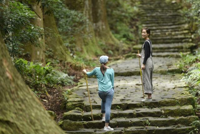 【和歌山・トレッキング】世界遺産の熊野古道をめぐろう!大門坂~那智の滝ウォーク(3時間)