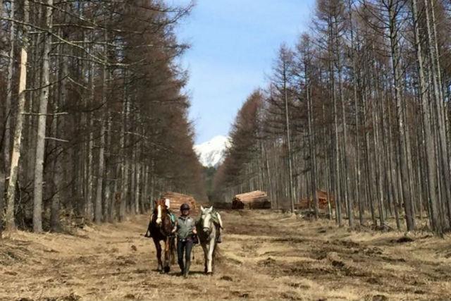 【山梨・ホーストレッキング・乗馬】引き馬でお手軽に外乗!お子さまにもオススメです