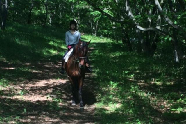 【山梨・ホーストレッキング・乗馬】親子で馬とお散歩!乗るだけカンタン引き馬コース