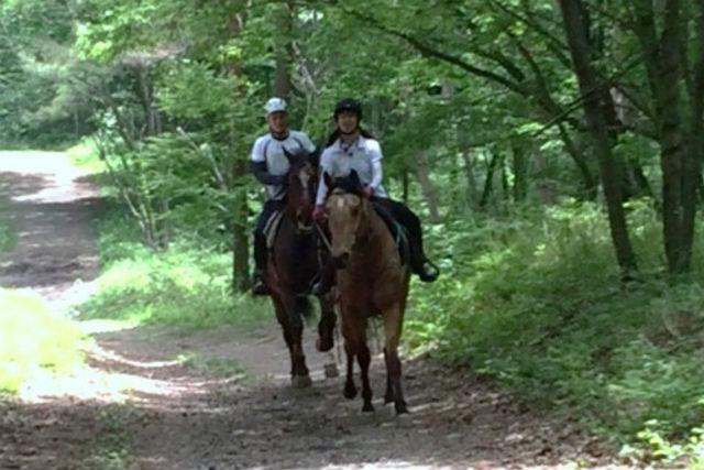 【山梨・ホーストレッキング・乗馬】小・中学生限定プラン!レッスン20分&森林乗馬15分