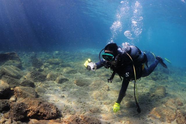 【和歌山・体験ダイビング】クマノミに会える!白崎で体験ダイビング(2ダイブ)