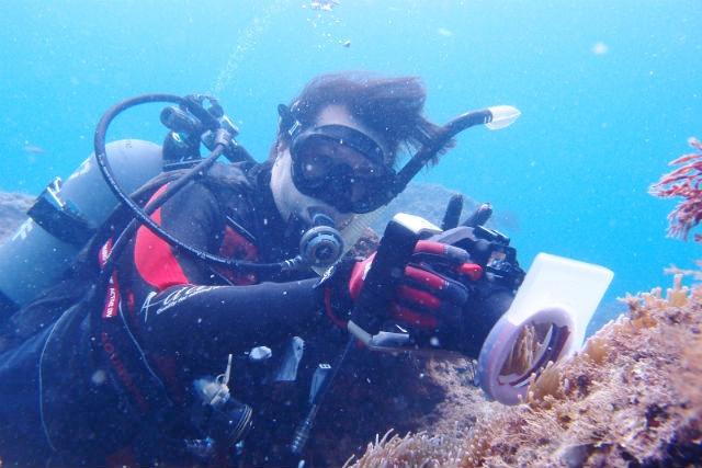 【和歌山・ファンダイビング】初めての水中写真にトライ!フォトダイビング