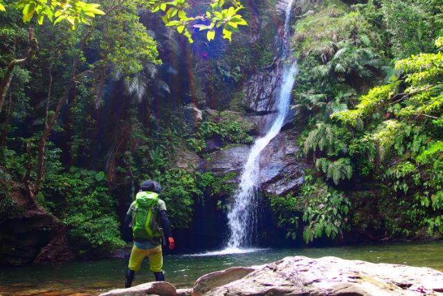 【沖縄・名護・トレッキング】ワクワク満載のお手軽ジャングル探検!マイナスイオンに癒されるリバートレッキングツアー!