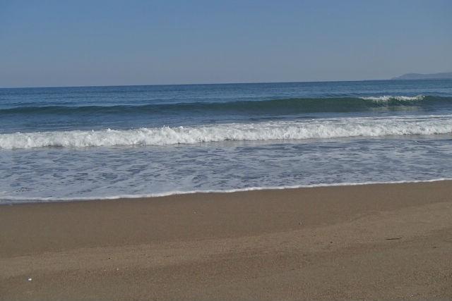 【新潟・サーフィン】日本サーフィン連盟のお墨付き!サーフィン4級検定GETプラン