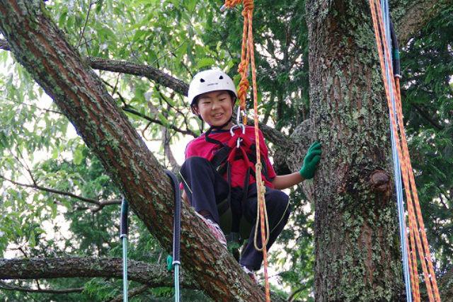 【山口・木登り】3歳から参加OK!ツリークライミングで木と友だちになろう