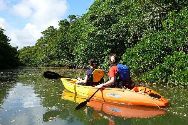 【沖縄・石垣島・カヌー】ガイドは自然観察指導員!カヌー&ジャングル探検プラン