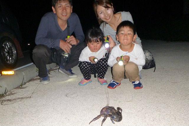 【沖縄・石垣島・エコツアー】夜行性の生き物を探そう!ナイトドライブプラン