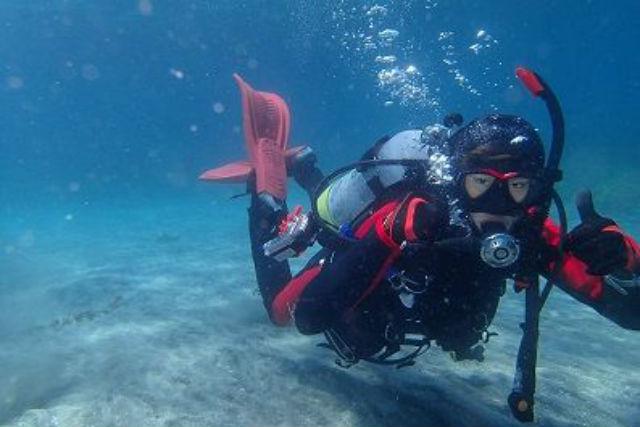 【千葉・ダイビング】スタッフがマンツーマンでご案内します!千葉の海で体験ダイビング