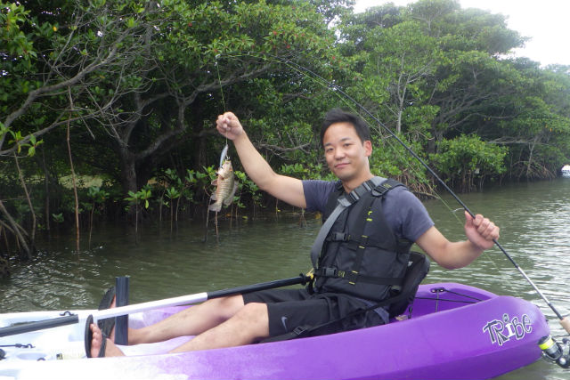 【沖縄・石垣島・カヤック】ジャングルで釣りしよう!マングローブカヤックフィッシング(貸切)