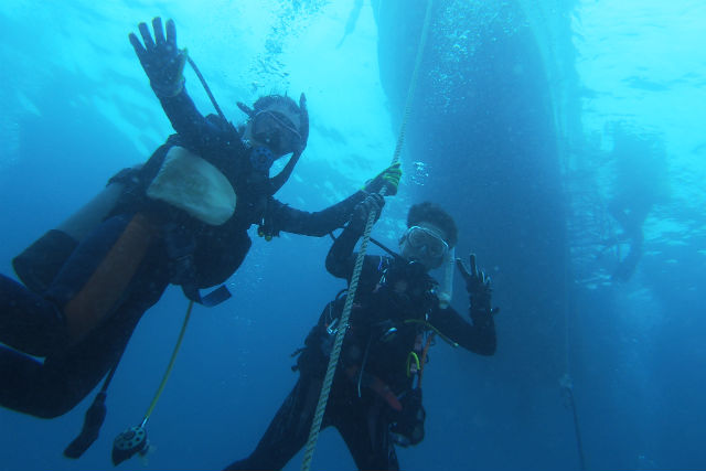 【兵庫・三田発・和歌山・ダイビング】夏の和歌山で、体験ダイビング&水中写真!(2ダイブ)
