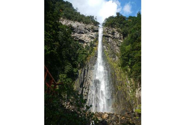 【和歌山・熊野古道・トレッキング】日本三大古道・大門坂~那智の滝コース(3時間)