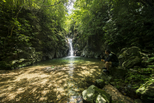 【沖縄・名護・リバートレッキング】中級者向け!穴場スポットへゆく、名護市の滝ツアー
