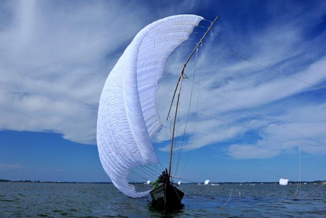 【茨城・霞ヶ浦・クルージング】帆をはためかせて走る!帆引き船・見学クルージング(玉造エリア)