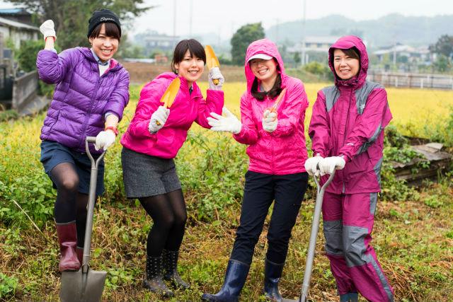 【埼玉・坂戸市・農業体験】お野菜の収穫+昼食作りで、農家ぐらしを実感!(ドリンク付)