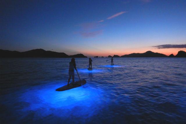 【沖縄・座間味・SUP】座間味の夜の海へご案内!ナイトSUPツアー