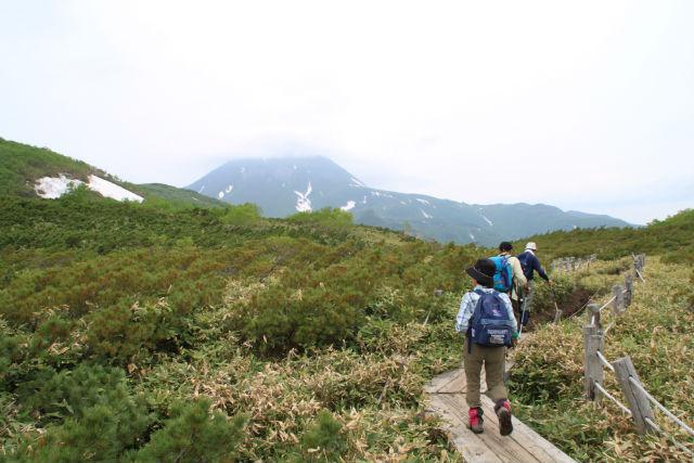 【北海道・知床・トレッキング】知床半島で最大の湖を見よう!羅臼湖コース(貸切)