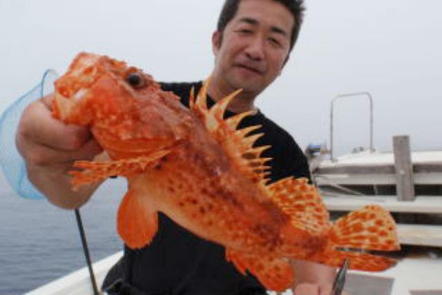 【大分市・釣り体験】貸切ジギングコース! 全長12mの遊漁船で釣りを満喫