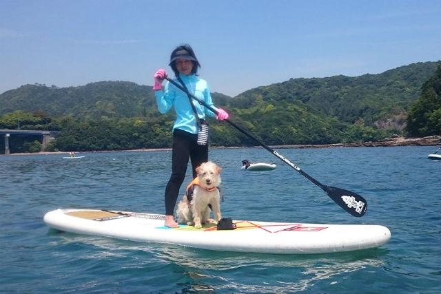 【高知・SUP】ペットと一緒に水上散歩!愛犬家にうれしいSUP体験