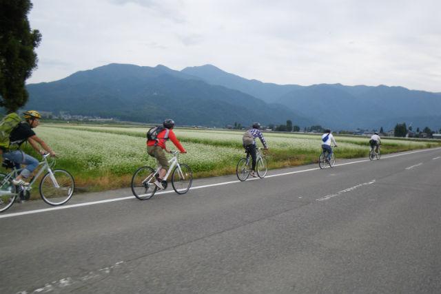 【福井・サイクリング】自然の中をのんびり。おおのDEゆっくりポタリング