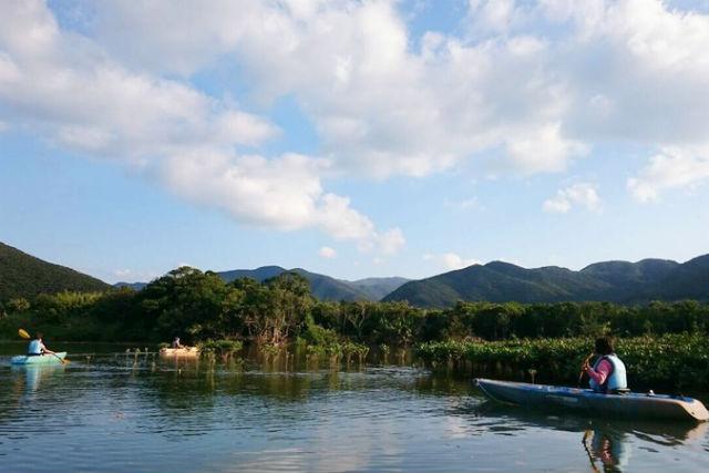 【鹿児島・奄美大島・カヌー】サンセットマングローブツアーと夜の森ツアー(3時間)