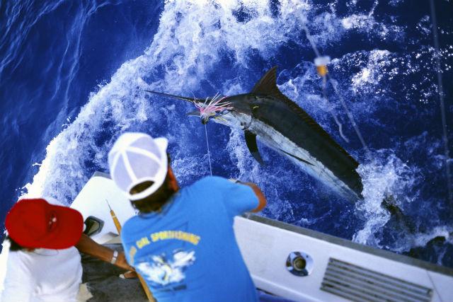 【沖縄・恩納村・釣り体験】大迫力の引き釣り!トローリング体験