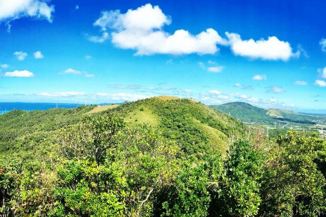 【沖縄・トレッキング】5歳から参加OK!緑豊かな石川岳トレッキング